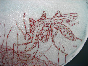 Mosquito Bowl