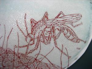 Mosquito Bowl
