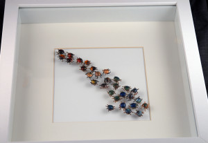 Beetle Pins_2015